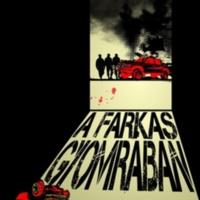 3_a_farkas_gyomraban.jpg