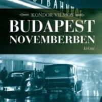 5_budapest-novemberben.jpg